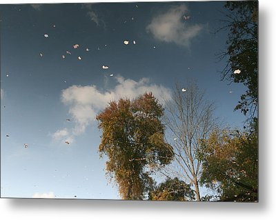 Metal Print featuring the photograph Reflective Thoughts  by Neal Eslinger
