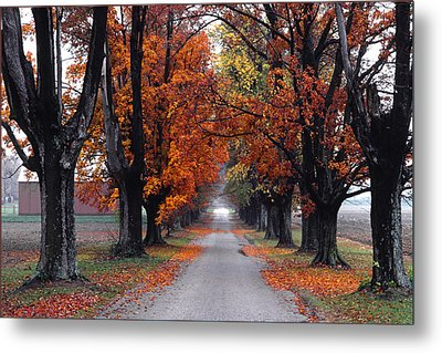 Reid's Orchard Drive Metal Print by Wendell Thompson