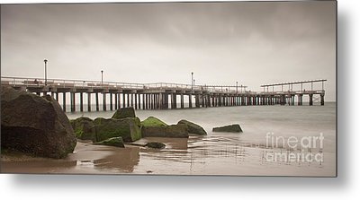 Relaxation  Metal Print by Michael Murphy
