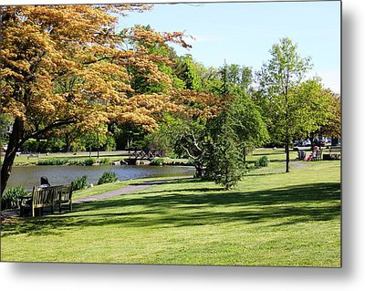 Metal Print featuring the photograph Relaxing In The Park by Judy Palkimas