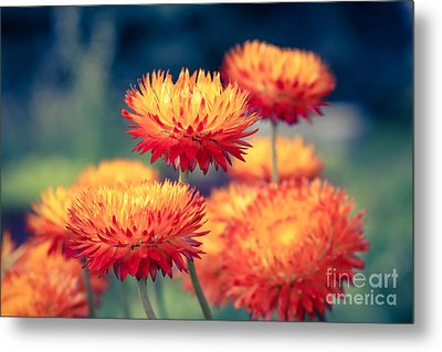 Release My Voice Metal Print by Sharon Mau
