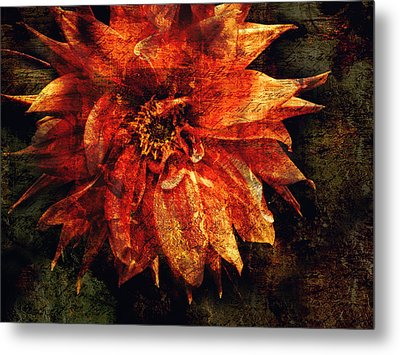 Remaining Open Metal Print by Jessica Brawley