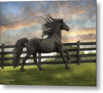 Remains Of The Day Metal Print by Fran J Scott