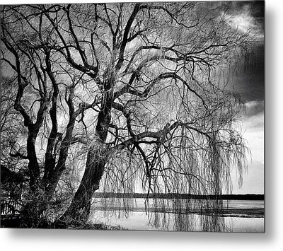 Remains Of Winter Metal Print
