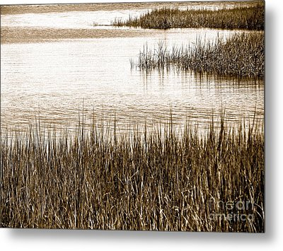 Remember The Silence Metal Print by Q's House of Art ArtandFinePhotography