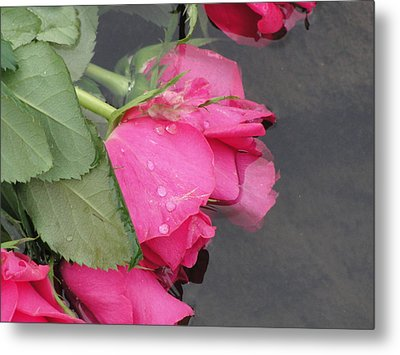 Metal Print featuring the photograph Remember by Tiffany Erdman