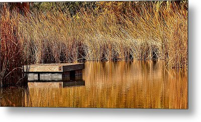 Metal Print featuring the photograph Remembering Summer Times by Elaine Malott