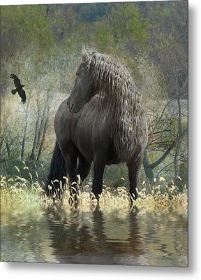 Remme And The Crow Metal Print by Fran J Scott