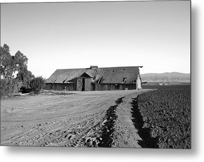 Remnants Of The Grapes Of Wrath Metal Print