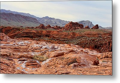 Metal Print featuring the photograph Remote by Tammy Espino