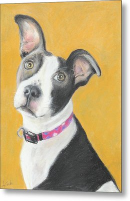 Rescued Pit Bull Metal Print by Jeanne Fischer