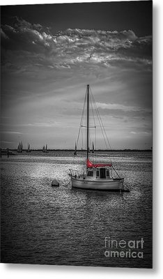 Rest Day B/w Metal Print by Marvin Spates