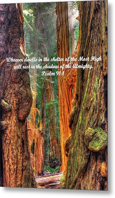 Rest In The Shadow Of The Almighty - Psalm 91.1 - From Sunlight Beams Into The Grove At Muir Woods Metal Print by Michael Mazaika
