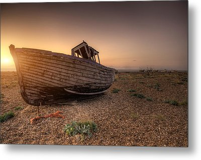 Rested Six Metal Print by Jason Green