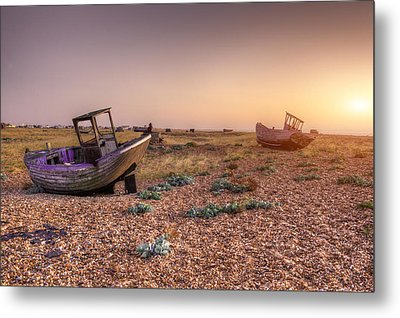 Rested Two Metal Print by Jason Green