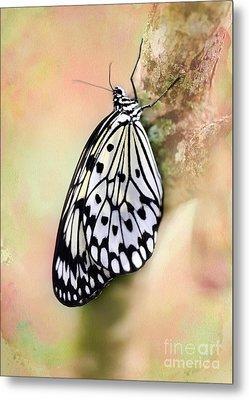Restful Butterfly Metal Print by Sabrina L Ryan