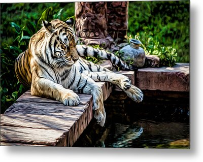Metal Print featuring the photograph Resting Beauty by Joshua Minso