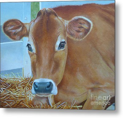 Resting Jersey Mom Metal Print by K L Kingston