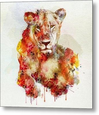 Resting Lioness In Watercolor Metal Print by Marian Voicu