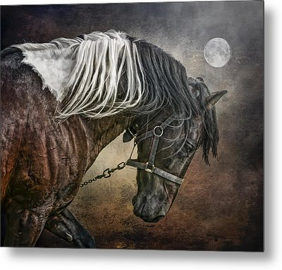Metal Print featuring the photograph Restless Moon by Brian Tarr