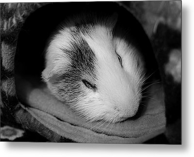 Restless Sleep Metal Print