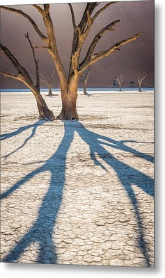 Return Of The Shadow Of The Camel Thorn - Dead Vlei Photograph Metal Print