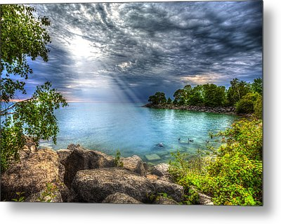 Reverie Metal Print by Anthony Rego