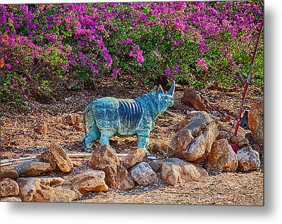 Rhino And Bougainvillea Metal Print by Omaste Witkowski