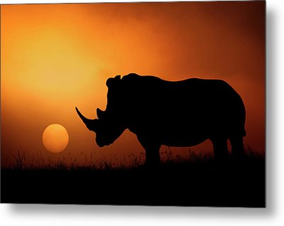 Rhino Sunrise Metal Print by Mario Moreno