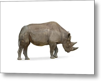 Metal Print featuring the photograph Rhinoceros by Charles Beeler