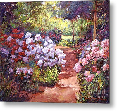 Rhododendron Stroll Metal Print by David Lloyd Glover