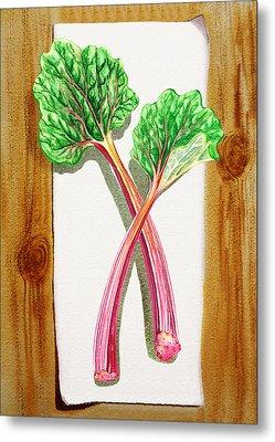 Rhubarb Tasty Botanical Study Metal Print by Irina Sztukowski