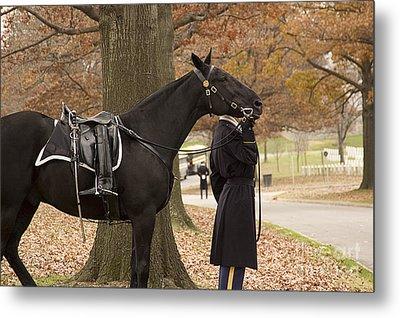 Riderless Horse Metal Print by Terry Rowe