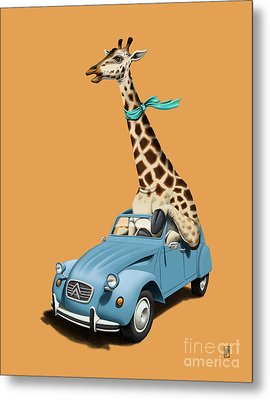 Riding High Colour Metal Print by Rob Snow
