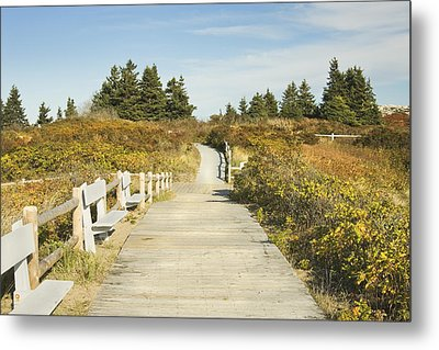 Ried State Park Beach Boardwalk On The Maine Coast Metal Print by Keith Webber Jr