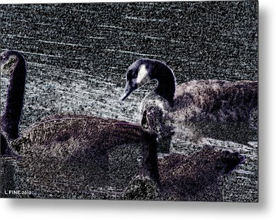 Metal Print featuring the photograph Right Behind Ya   by Lesa Fine