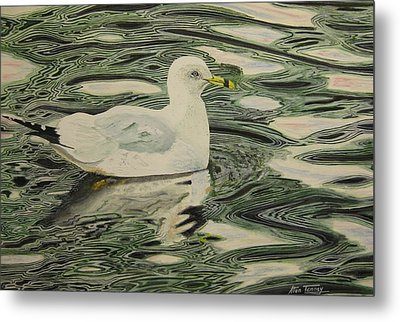 Ring Bill Seagull Metal Print
