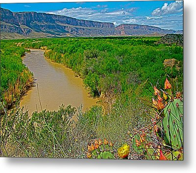 Rio Grande East Of Santa Elena Canyon In  Big Bend National Park-texas Metal Print by Ruth Hager