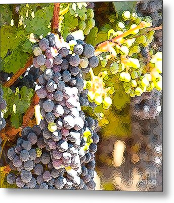 Ripe Grapes Metal Print by Artist and Photographer Laura Wrede