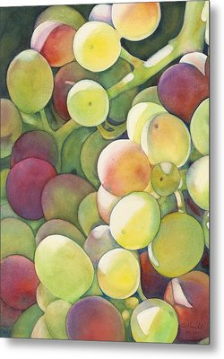 Ripening Metal Print by Sandy Haight