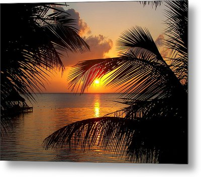 Rise And Behold Metal Print by Karen Wiles