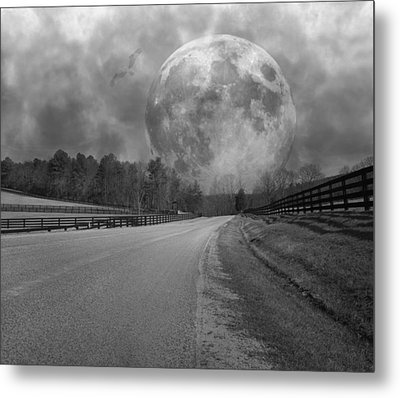 Rise To The Occasion  Metal Print by Betsy Knapp