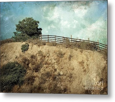 Rising Above Metal Print by Ellen Cotton