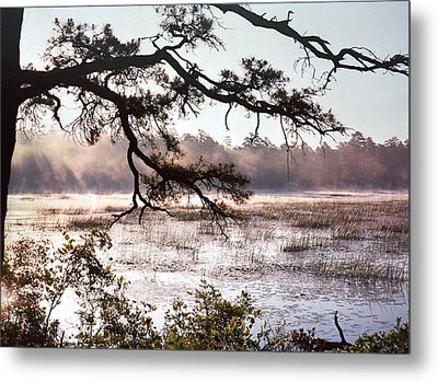 Rising Mist On Batsto Lake Metal Print by Greg Vizzi