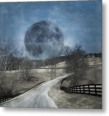 Rising To The Moon Metal Print