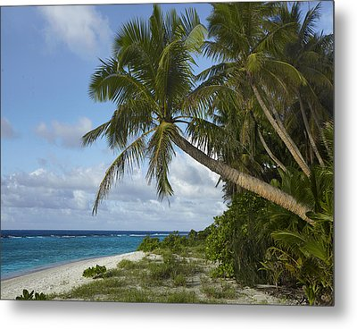 Ritidian Beach In Guam Metal Print by Tim Fitzharris