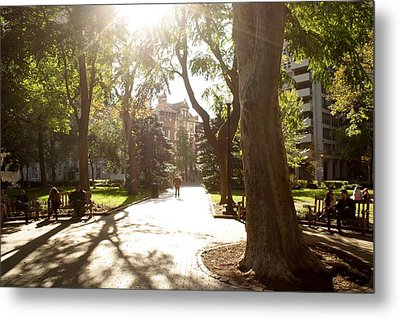 Rittenhouse In The Sun Metal Print by Christopher Woods