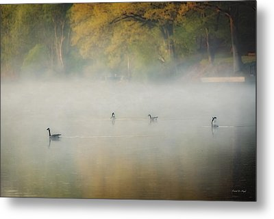 River At Sunrise Metal Print by Everet Regal