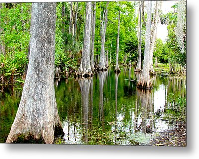River Bend  Metal Print