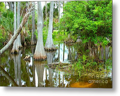 River Bend Lake Metal Print